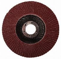 Lamelový kotouč pro ocel 125x22,2 hr.60